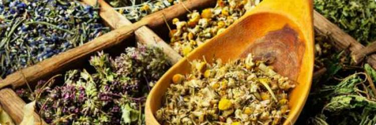 5 лучших растений для печени