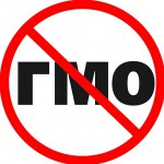 список ГМО-продуктов